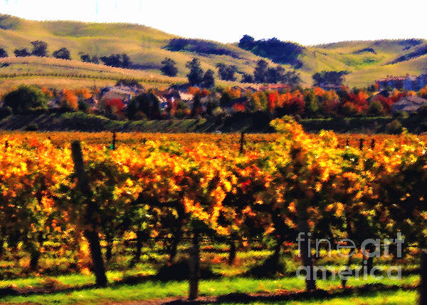 California Photograph - Autumn In The Valley 2 - Digital Painting by Carol Groenen
