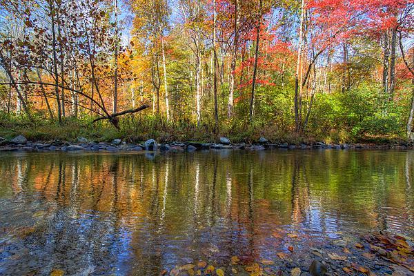 20 Mile Cascade Photograph - Autumn Stream by Debra and Dave Vanderlaan