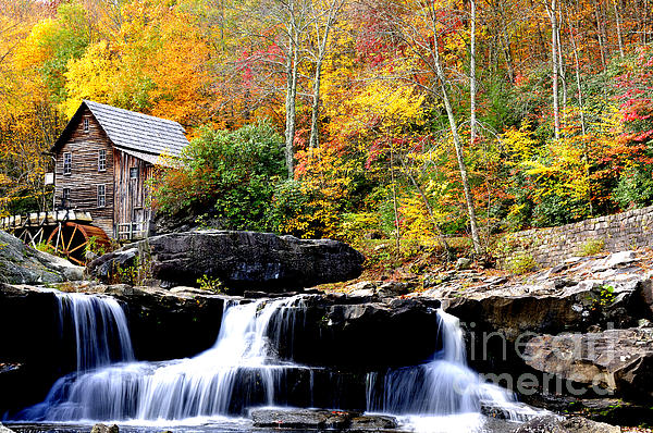 West Virginia Photograph - Babcock State Park by Thomas R Fletcher