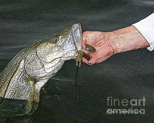 Bonefish Painting - Back Bay Snook by Alex Suescun