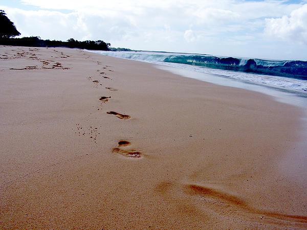 Beaches Photograph - Beaches 04 by Earl Bowser
