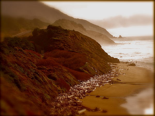 Beach Photograph - Beaches by Amber Hennessey
