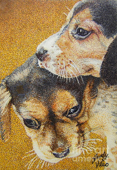 Puppies Drawing - Beagle Puppies by Judy Skaltsounis