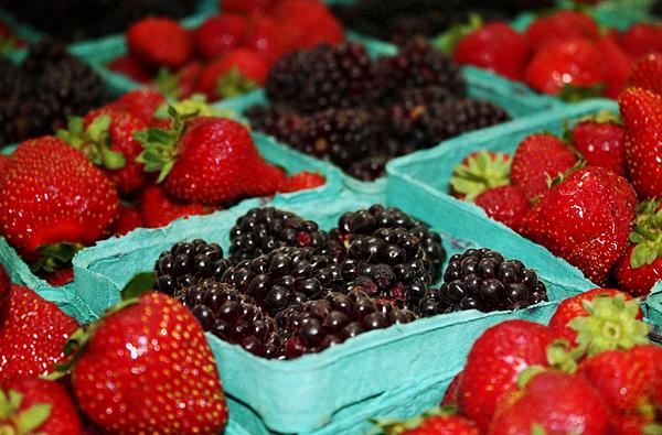 Strawberries Photograph - Berries by Cathie Tyler