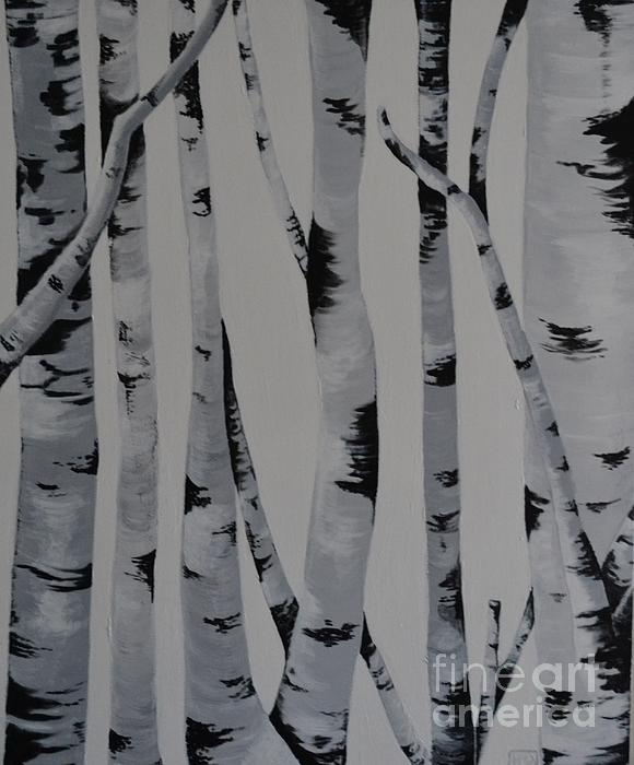 Holly Donohoe - Birch Trees