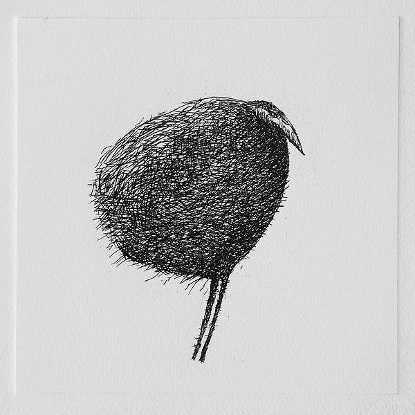 Printmaking Mixed Media - Bird by Valdas Misevicius
