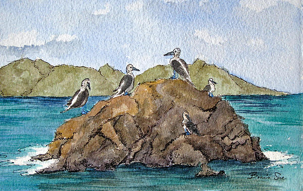 Galapagos Painting - Blue Footed Boobies In Galapagos by Bonnie Sue Schwartz