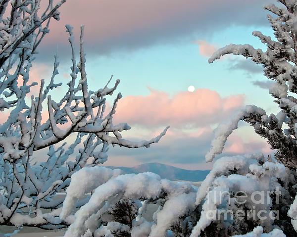 Boyd Lake Photograph - Boyd Lake Winter Sunrise by Harry Strharsky