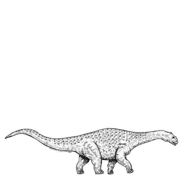 Cartoon Drawing - Brontonsaurs - Dinosaur by Karl Addison