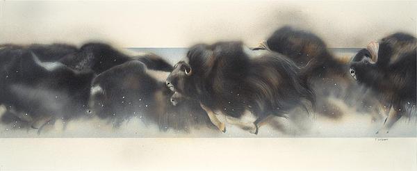 Douglas Fincham Art Painting - Buffalo In Winter by Douglas Fincham