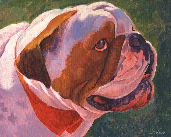 English Bulldog Painting - Bully For Me by Shawn Shea