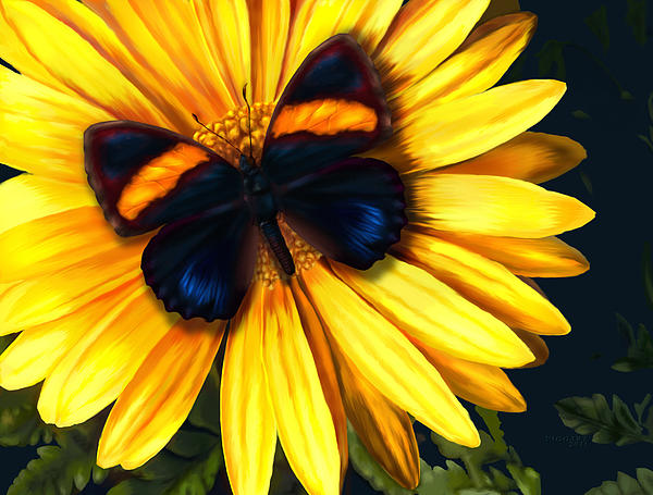 Butterfly Digital Art - Butterfly On Yellow by Virginia Palomeque