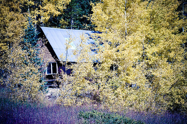 Cabin Photograph - Cabin Hideaway by James BO  Insogna