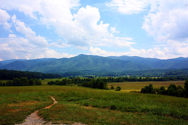 Cades Cove Photograph - Cades Cove by Susie Weaver