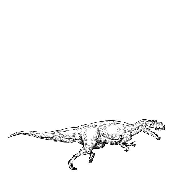 Cartoon Drawing - Ceratosaurus - Dinosaur by Karl Addison
