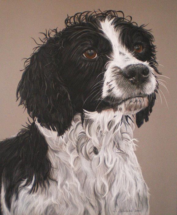 Dog Pastel - Charlie by Joanne Simpson