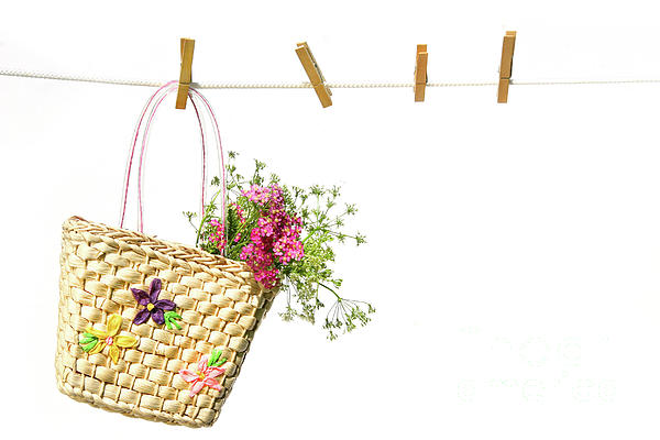 Baby Photograph - Childs Straw Purse With Flowers by Sandra Cunningham