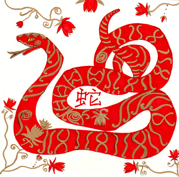Chinese Drawing - Chinese Zodiac Snake by Barbara Giordano