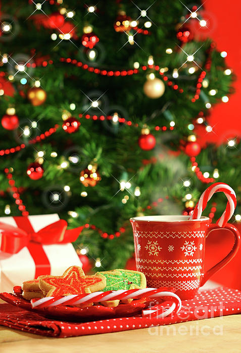 Child Photograph - Christmas Cookies  Near The  Tree  by Sandra Cunningham