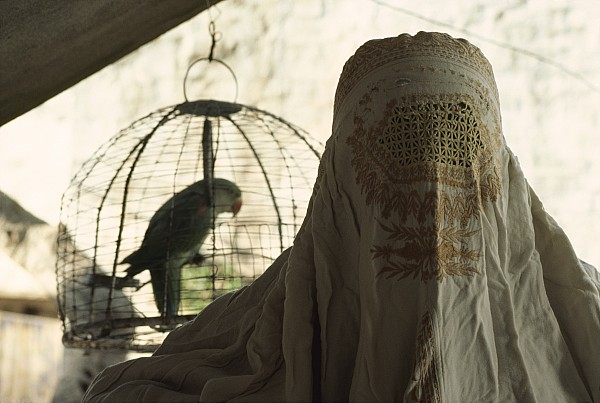 Asia Photograph - Close-up Of A Woman And A Parakeet - by James L. Stanfield