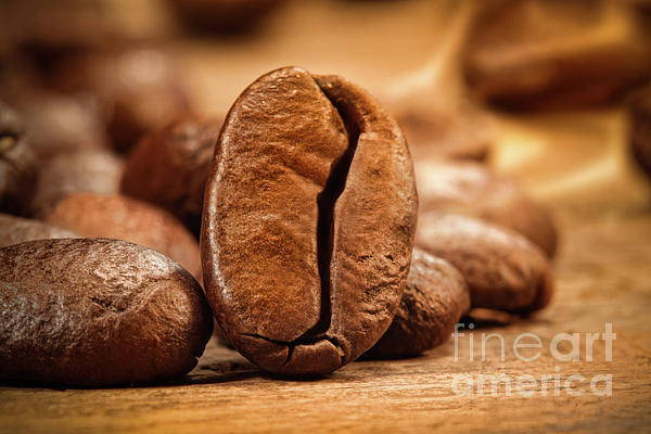 Aromatherapy Photograph - Closeup Shot Of A Coffee Bean On Wood by Sandra Cunningham
