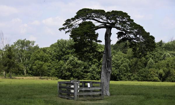 Appomattox Photograph - Confederate Grave Of Lafayette Meeks Appomattox Virginia by Teresa Mucha