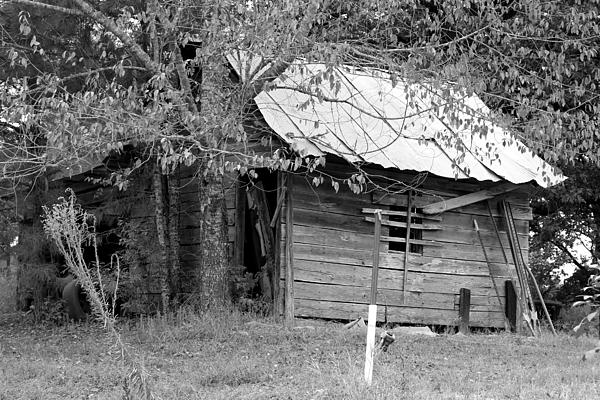Black And White Digital Art - Country Shed by Suzanne  McClain