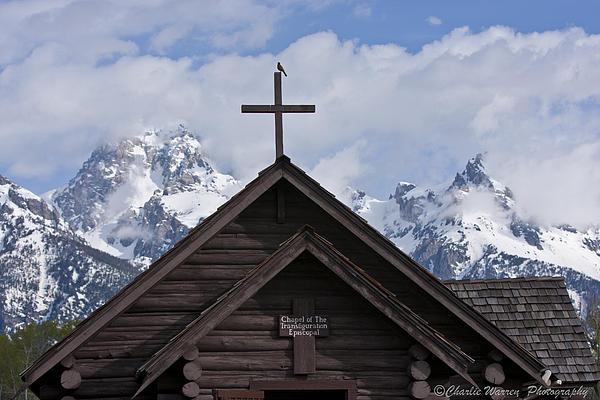 Grand Tetons Photograph - Cross Bird by Charles Warren