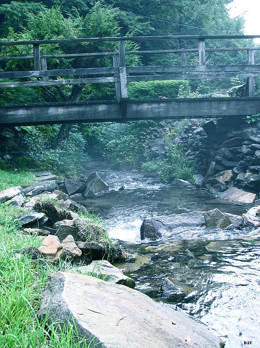 Walking Bridge Photograph - Cross The Stream by Debra     Vatalaro