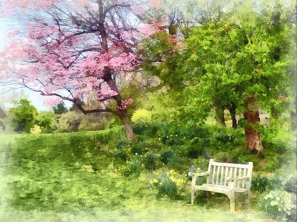 Daffodil Photograph - Daffodils By Bench by Susan Savad