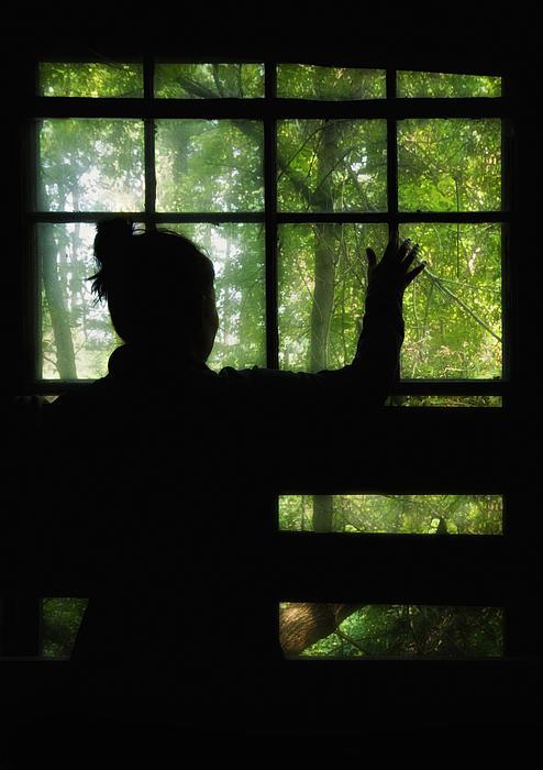Silhouette Photograph - Desperate Ways by Evelina Kremsdorf