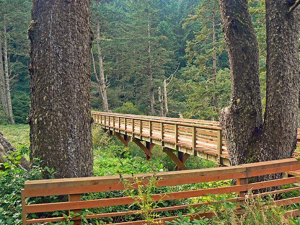 Bridge Photograph - Discovery Trail Bridge by Pamela Patch