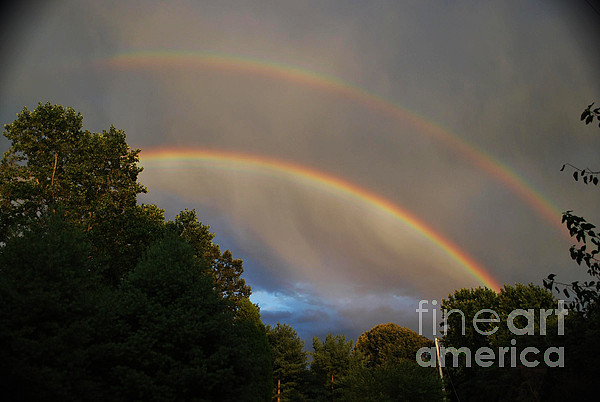 Science Photograph - Double Rainbow by Science Source