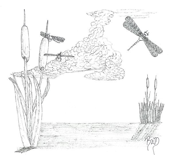 Dragonflies Drawing - Dragonflies And Cattails - Sketch by Robert Meszaros