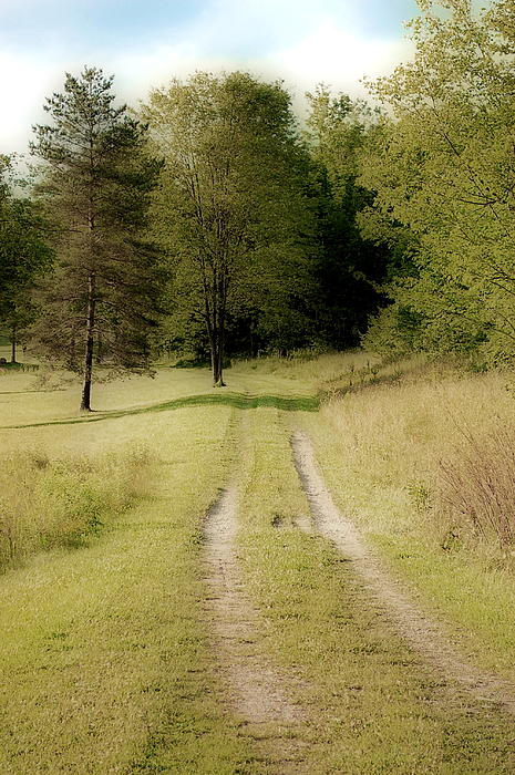 Path Photograph - Dream Path by Emily Stauring