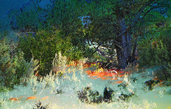Abstract Photograph - Dreaming Of Wyoming by Lenore Senior and Dawn Senior-Trask