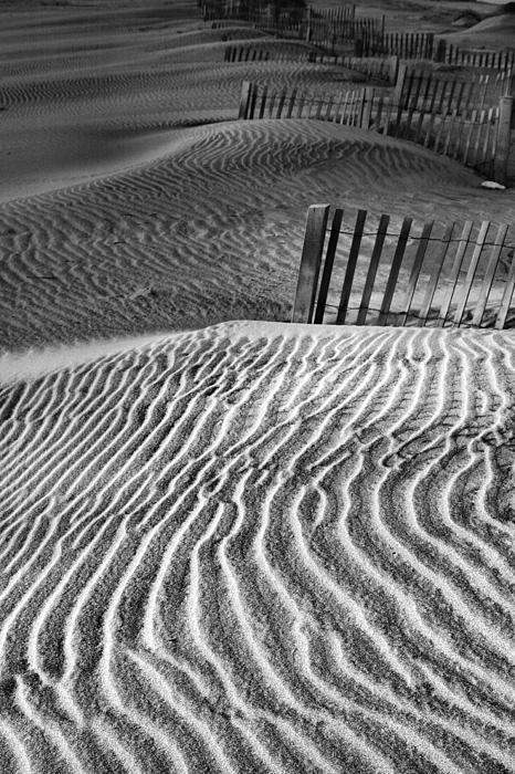 Pattern Photograph - Dune Patterns by Steven Ainsworth