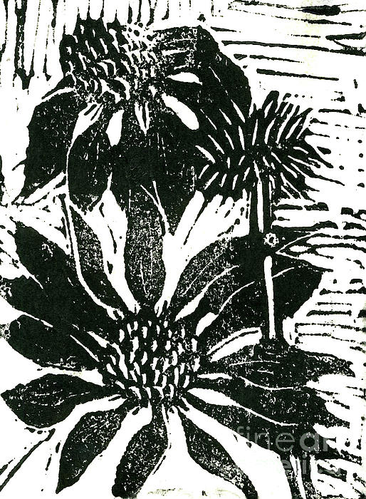 Lino Mixed Media - Echinacea Block Print by Ellen Miffitt