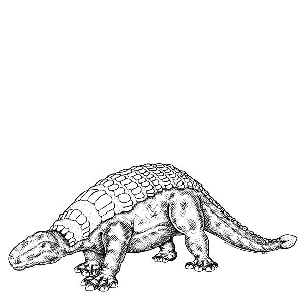 Cartoon Drawing - Edmontonia - Dinosaur by Karl Addison