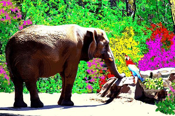 Elephant Photograph - Elephant-parrot Dialogue by Romy Galicia