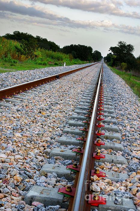 Blue Photograph - Empty Railway by Carlos Caetano