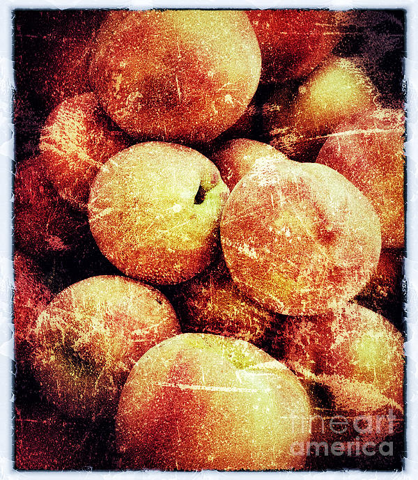 Peaches Photograph - End Of Season by Jim Moore