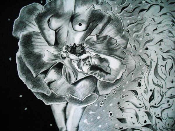 Rose Drawing - Essence by Saheed Fawehinmi
