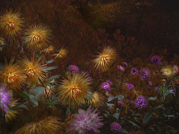 Garden Photograph - fall at Butchart Gardens Vancouver Island by Jeff Burgess