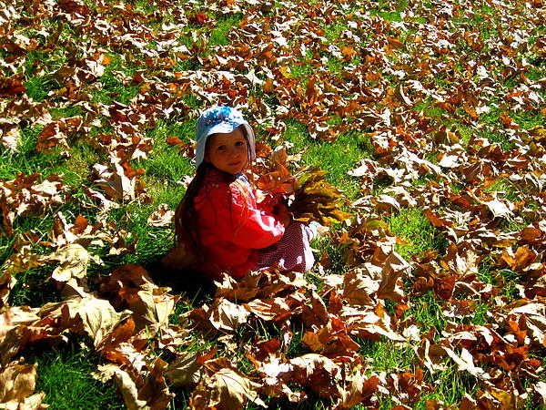 California Photograph - Fall Is Fun by Catherine Natalia  Roche