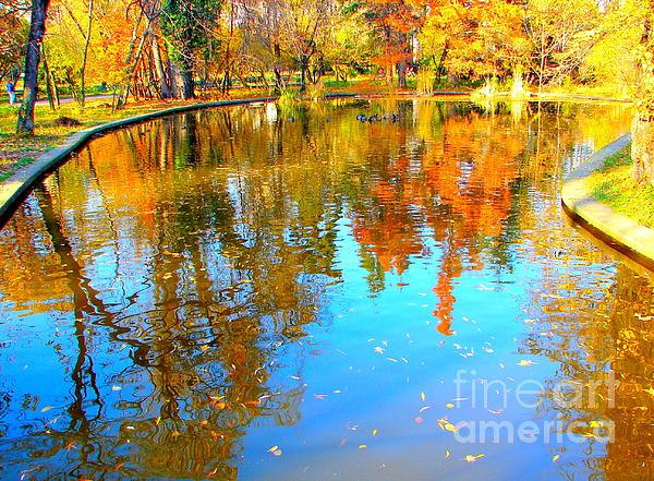 Fall Photograph - Fall Reflections by Ana Maria Edulescu