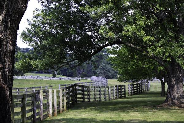 Appomattox Photograph - Farmland Shade Appomattox Virginia by Teresa Mucha
