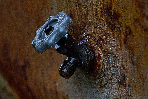 Faucet Photograph - Faucet by Wilma  Birdwell