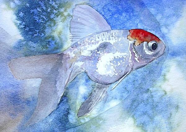 Fish Painting - Fillet by J Vincent Scarpace