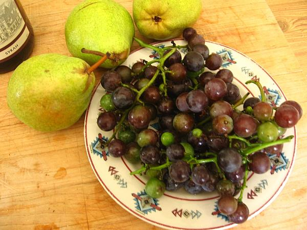 Grapes Photograph - First Harvest by Deb Martin-Webster